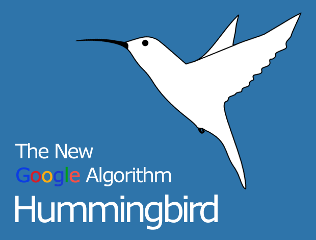 Google Hummingbird : What It Means for Search and SEO
